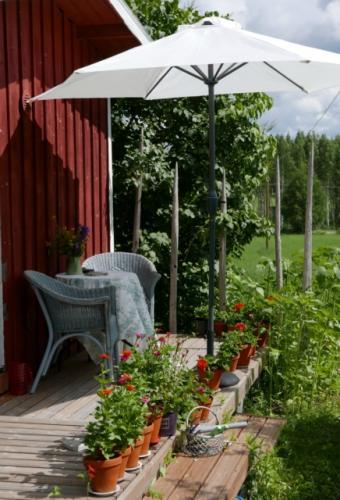 Eteläkankaan puutarha - Hilkka Asikainen